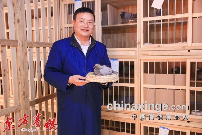余烨和他精心作育雏鸽。