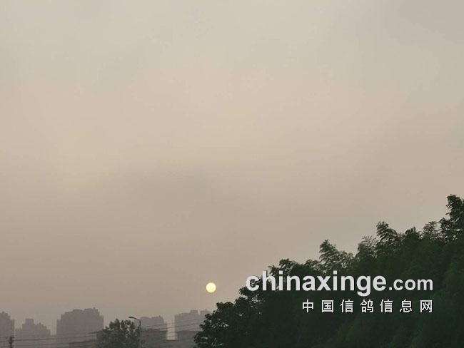 放飞时当地有雾的天气